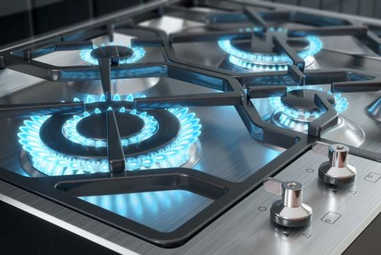 Cooker with burners close-up. 3d render