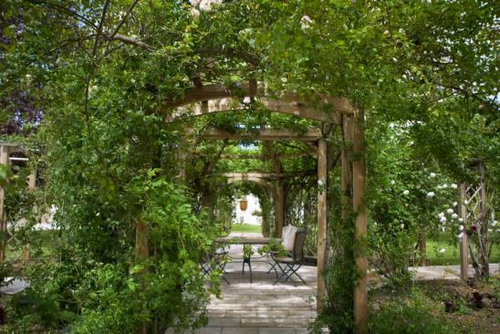 Pergola, patio and rose garden in the park