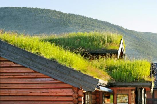 Small houses with grass roof at a mountain in the Norway.